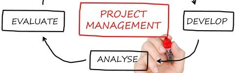 Project management professionals are adept in planning projects, building its work plan, managing the budget, managing project teams and executing and completing projects. Business professionals in this list are interested in tools and software for keeping all projects organized, automating or streamlining processes and connecting project teams together.