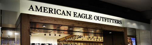 When they dive for prey, they can go up to 100 miles per hour. Oops... this isn't about bald eagles. This audience loves shopping at American Eagle! They enjoy clothing, such as American Eagle jeans, polo shirts, boxers and swimwear. People in this audience regularly look into American Eagle's Aerie Clearance store.
