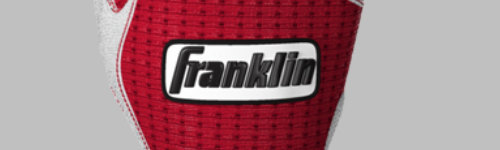 Franklin even has products for corn hole. People in this audience regularly buy MLB gear and other sporting goods made by Franklin. They have been observed to check out products, like custom batting gloves, soccer gear, lacrosse gear, football gear, street hockey gear and basketball equipment. This audience may be interested in indoor sports equipment, such as air hockey or arcade basketball.