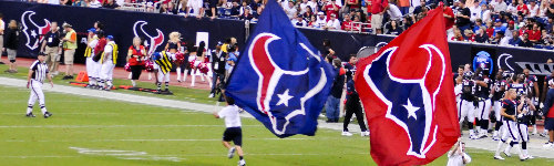 The Houston Texans once proposed a Chad Kroeger song as their fight song, fans weren't too pleased with it.  This audience loves the Houston Texans! People in this audience may regularly attend games at NRG Stadium or follow NFL players, like J. J. Watt, Tom Savage or DeAndre Hopkins. They may watch other AFC South teams play, such as the Indianapolis Colts, Tennessee Titans or Jacksonville Jaguars.