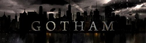 Gotham takes place while Batman also known as Bruce Wayne is a child. This audience enjoys watching crime drama series. People in this audience may also enjoy watching TV series with superheroes, like The Flash and Daredevil, as this show talks about the city of Gotham before Batman's arrival. They may also enjoy other shows like Dexter, Sherlock, and Law & Order.