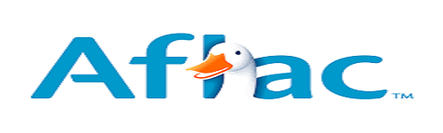 When you see the name, a duck comes to mind. People in this audience are interested in finding an insurance plan from Aflac. They are interested