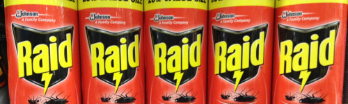 Exterminate roaches and other pests with Raid. People in this audience are in need of insecticides manufactured by Raid. They have been observed researching products like Raid Ant and Roach Barrier, Raid Ant and Roach Killer 26, Raid Bed Bug Detector and Trap, Raid Max Bug Barrier and Raid  Roach Gel.
