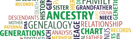 "Ancestry.com says ""Your sister could be much more Irish than you. And this is true for any of over 150 ethnic regions covered by the AncestryDNA test. So your sibling could also be more (or less) British, Nigerian, or Scandinavian than you."" This audience wants to find out more about their ancestry. They are interested in learning more about their genealogy through Ancestry.com's family trees and historical records. People in this audience may have past exposure to Ancestry.com's AncestryDNA."