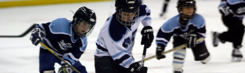 Exposing children to as many different sports as possible can help them better understand the world around them. People in this audience are interested in having their kids play in a youth hockey league. To have their kids play, this audience is interested in purchasing hockey gear, including hockey skates, hockey pants, shoulder pads, and elbow pads.