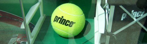 """The Prince of Tennis."" This audience may frequently play tennis, and are regular customers of Prince tennis products. They have been observed checking out Prince tennis racquets, tennis shoes and tennis apparel. People in this audience may be fans of Textreme tennis racquets."