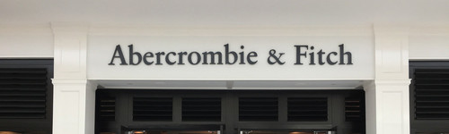 This audience loves clothing from Abercrombie and Fitch! They regularly shop at Abercrombie and Fitch for more upscale clothing, such as dresses and rompers, jeans or coats and jackets. People in this audience may also be interested in stores, like Aeropostale and American Eagle Outfitters.