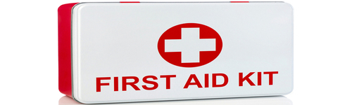 Having first aid supplies can be the different between a flesh wound and an infection, always be prepared! This audience includes people who are interested in purchasing first aid supplies. They may purchase products, such as adhesive bandages, burn treatment products, CPR products, first aid kits, and antiseptic first aid products. Swiss Safe, M2Basics, Coleman First Aid Kit, and AQGoodLife are big name brands in this industry.