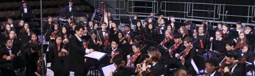 "The term ""orchestra"" comes from the Greek phrase that dancing place. People in this audience love instruments that are primarily played in an orchestra. This audience has been seen to research instruments, like violins, viola, cello, double bass and the harp. They may be interested in instrument brands, such as Yamaha, Stentor, or Cecillo."