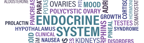 The American Association of Clinical Endocrinologists (AACE) is a professional community of physicians specializing in endocrinology.  Those in this list are seeking membership or partnership with this organization to improve patient care for those with endocrine conditions.