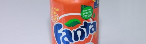 People in this audience love drinking soft drinks, especially Fanta! They have past exposure to a variety of flavors, like Fanta orange, Fanta apple, Fanta pineapple, Fanta strawberry, Fanta peach or Fanta mango. This audience may enjoy other Coca-Cola brands, like Dasani, Coca-Cola, Sprite and Odwalla.